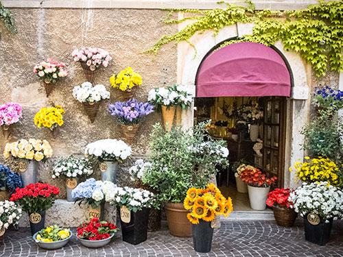 Boutiques de fleuristes
