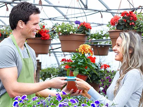 Vente des fleurs